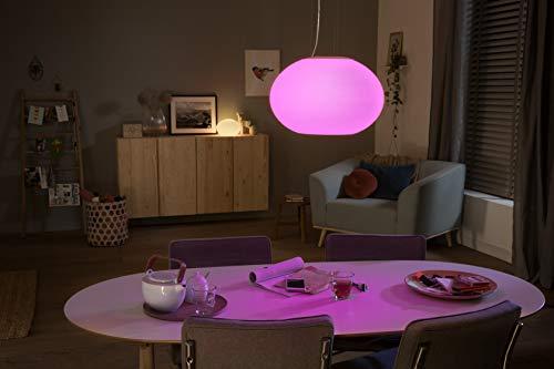 Philips Hue Flourish LED Pendelleuchte - 8