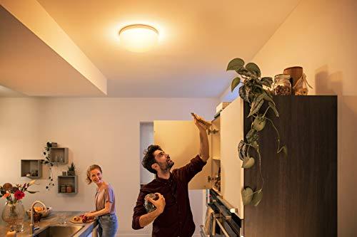 Philips Hue Flourish LED Deckenleuchte - 5