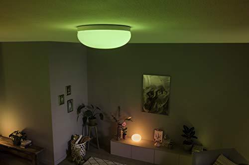 Philips Hue Flourish LED Deckenleuchte - 6